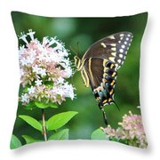 Butterfly Dining  Throw Pillow