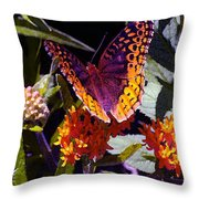 Butterfly Don't Fly Away Throw Pillow