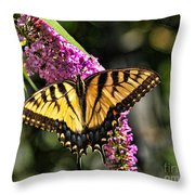 Butterfly - Eastern Tiger Swallowtail Throw Pillow