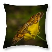 Butterfly Fan Throw Pillow