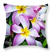 Butterfly Flowers Throw Pillow