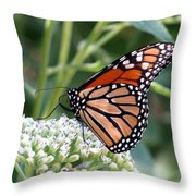 Butterfly Garden - Monarchs 07 Throw Pillow