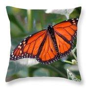 Butterfly Garden - Monarchs 10 Throw Pillow