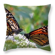 Butterfly Garden - Monarchs 17 Throw Pillow