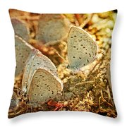 Butterfly Gathering Throw Pillow