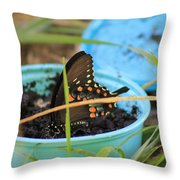 Butterfly In A Cup Throw Pillow