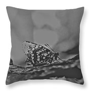 Butterfly In Black And White Throw Pillow