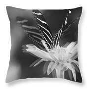 Butterfly In Motion #1952bw Throw Pillow