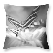 Butterfly In Motion #1961bw Throw Pillow