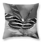 Butterfly In Motion Throw Pillow