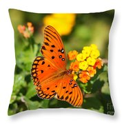 Butterfly In The Glades - Gulf Fritillary Throw Pillow
