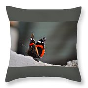 Butterfly Landing Throw Pillow