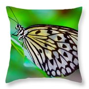 Butterfly On A Leaf Throw Pillow