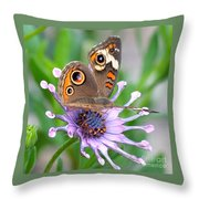 Butterfly On African Daisy Throw Pillow