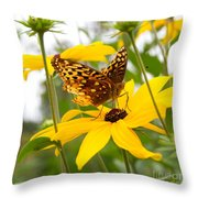 Butterfly On Blackeyed Susan Throw Pillow