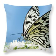Butterfly On Blue Throw Pillow