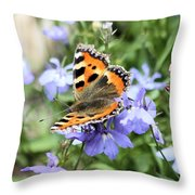 Butterfly On Blue Flower Throw Pillow