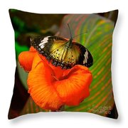 Butterfly On Canna Flower Throw Pillow