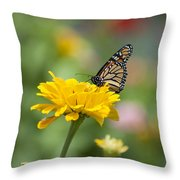 Butterfly On Carnation Throw Pillow