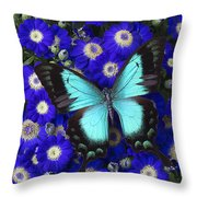 Butterfly On Cineraria Throw Pillow