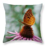 Butterfly On Cornflower Throw Pillow