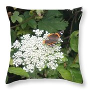 Butterfly On Lace Throw Pillow