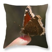 Butterfly On My Finger Throw Pillow