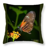 Butterfly On Orange Bloom Throw Pillow