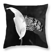 Butterfly On Peace Lilly Throw Pillow