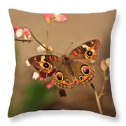 Butterfly On Pink Throw Pillow