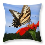 Butterfly On Red Daisy Throw Pillow