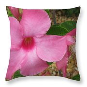 butterfly on the Mandevilla Throw Pillow