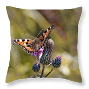 Butterfly On Tistle Sep Throw Pillow