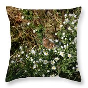 Butterfly On White Flowers Throw Pillow