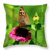 Butterfly On Zinnia Flower 2 Throw Pillow