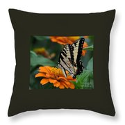 Butterfly On Zinnia Throw Pillow