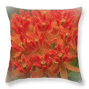 Butterfly Orange Throw Pillow