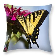 Butterfly Out Of The Blue - Blue Butterfly Art Throw Pillow
