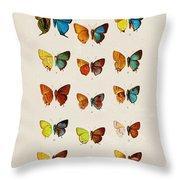 Butterfly Plate Throw Pillow