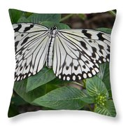 Asian Paper Kite Throw Pillow