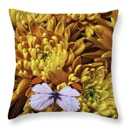 Butterfly Resting On Mums Throw Pillow