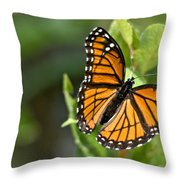 Butterfly Scene Throw Pillow