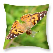 Butterfly Series 1 Of 5 Throw Pillow