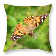 Butterfly Series 2 Of 5 Throw Pillow