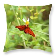 Butterfly Series 3 Of 5 Throw Pillow