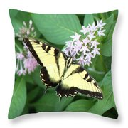 Butterfly - Swallowtail Throw Pillow