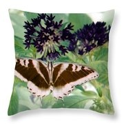 Butterfly - Swallowtail - Photopower 141 Throw Pillow