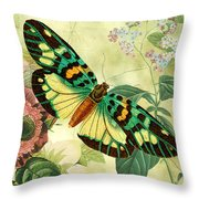 Butterfly Visions-a Throw Pillow