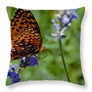 Butterfly Visit Throw Pillow