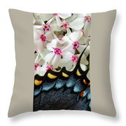Butterfly Wing And Phlox Throw Pillow